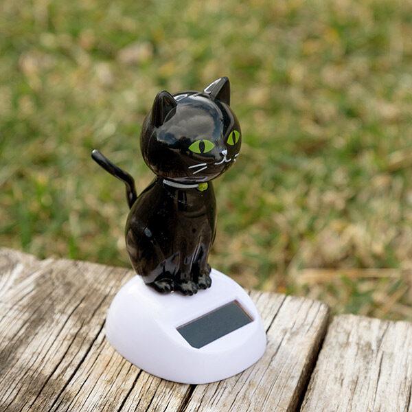Sort Solcelle Kat med Bevægelser