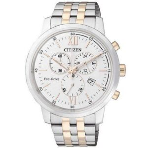 AT2305-81A Citizen Herreur